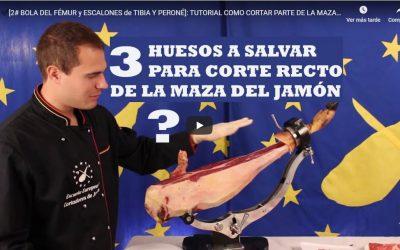 ▷ Salvar hueso de la cadera, fémur y escalones en la maza ✅ Oferta de Cursos Gratuitos de Cortador de Jamón en Madrid